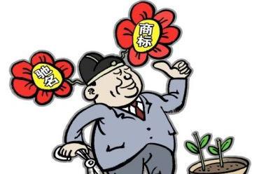 深圳商标注册的流程是什么?